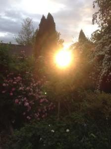 setting sun 05 19